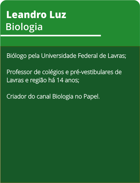 cards-curriculos8.png