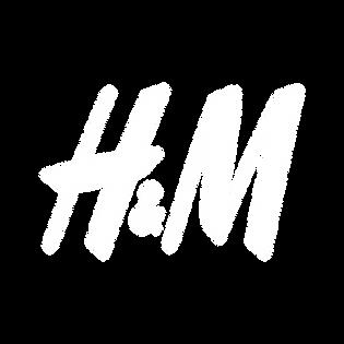 H_M - Pillow.png