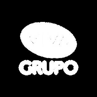 Viva Grupo - Pillow.png