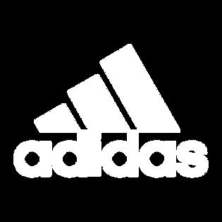 Adidas - Pillow.png