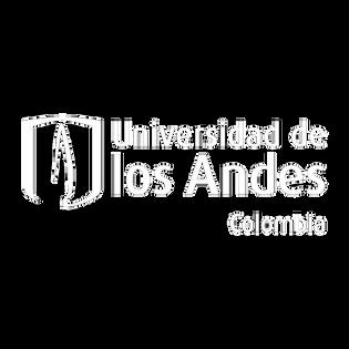 Universidad de los Andes - Pillow.png