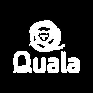 Quala - Pillow.png