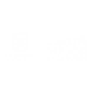 Bogotá_Mejor_para_Todos_-_Pillow.png