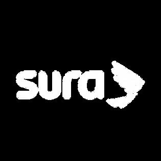 Sura - Pillow.png