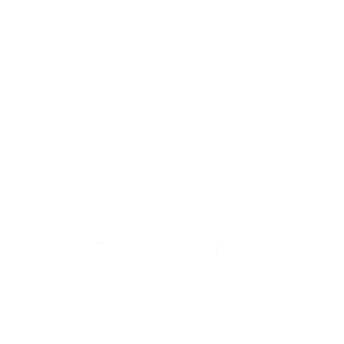 Belcorp - Pillow.png