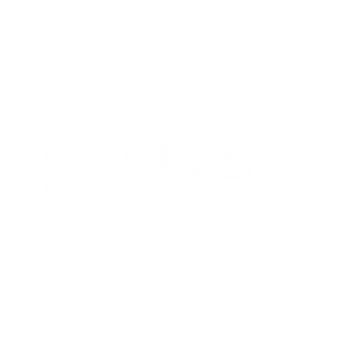 USAID - Pillow.png