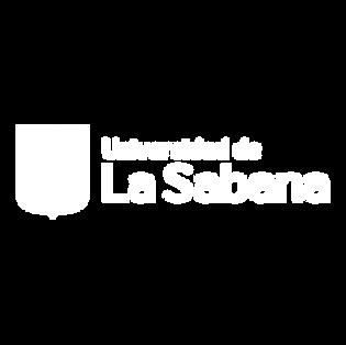 Universidad de la Sabana - Pillow.png