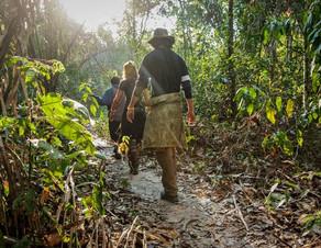 Amazonie en Bolivie