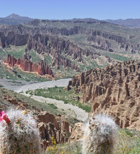 les-canyons-de-tupiza