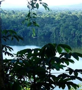 le-parc-national-madidi