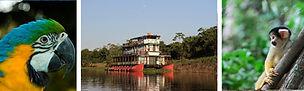 Flotel Amazonie Bolivie