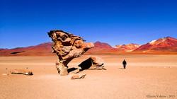 désert du Lipez