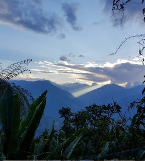 les-yungas-en-bolivie