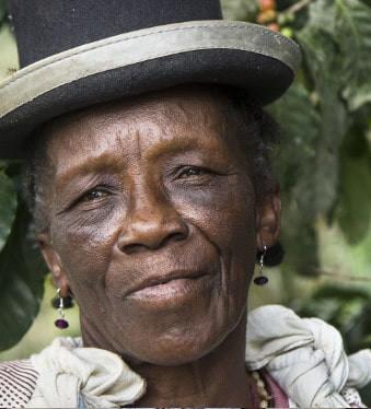 groupes ethniques d'origine africaine sont arrivés à Los Yungas ,