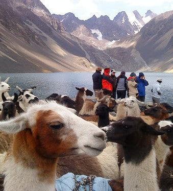 Trek cordillere andes Bolivie