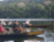 panoramique_amazonie_chalalan3.jpg