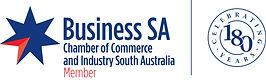 Business-SA.jpg