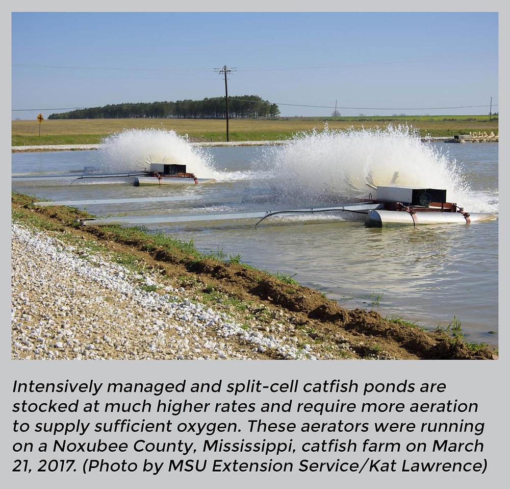 catfish pond aerators