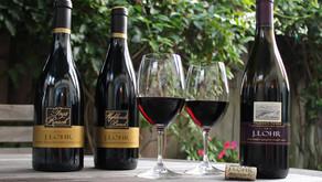 J. Lohr Pinot Noirs Offer Big, Rich Flavors