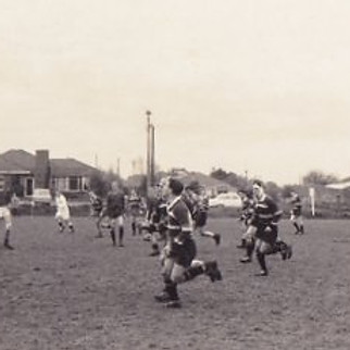 Box Hill Rugby - 1960's