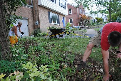 Lanscaping neighborhood beds