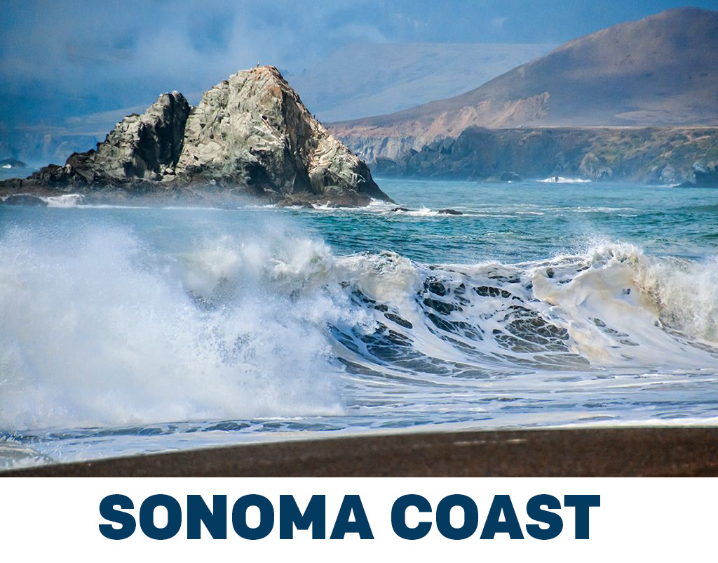 bodega bay hindu dating site With all counties record for the state—dating back to 1895— and the wettest year on  waterbody site heal the bay // 2016-2017 beach report card 19.