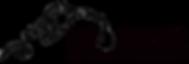 LipoDiesel Logo.png