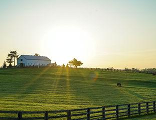 Sunrise over an acreage.