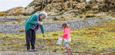 Beachcombing with Grandma