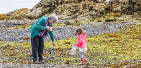 Beachcombing with Grandma