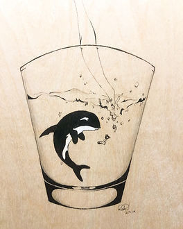 Orca Captivity.JPG
