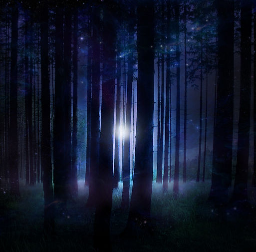 magical_forest_stock_by_wyldraven_d20vkr