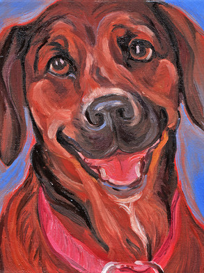 Pet_portrait_Hound_MaryS 001.jpg