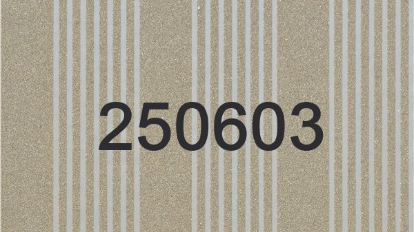 250603 - 250604