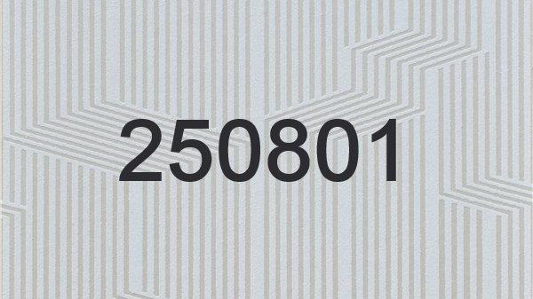 250801 - 250802 - 250803