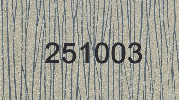 251003 - 251004 -251005