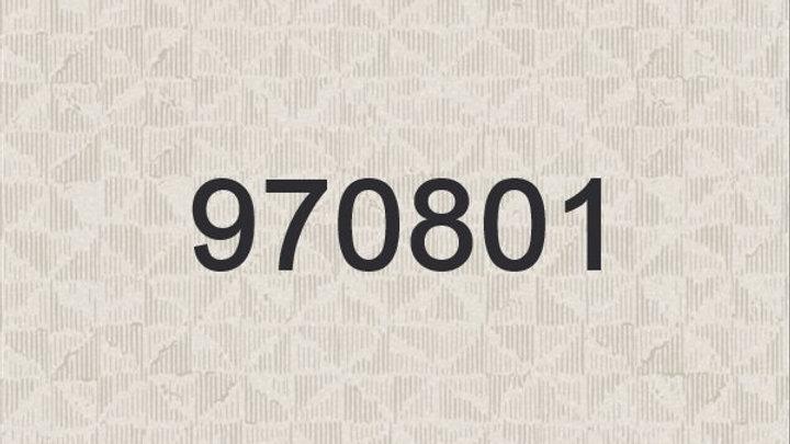970801-970802-970803-970804-970805