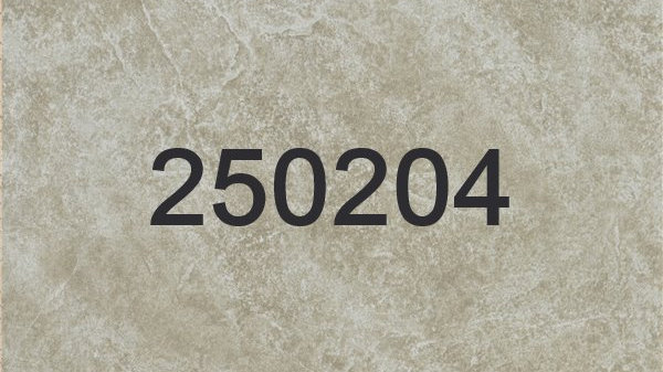 250204 - 250205