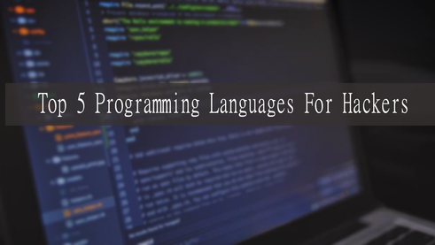 Top 5 Most Popular Programming Languages For Hacking