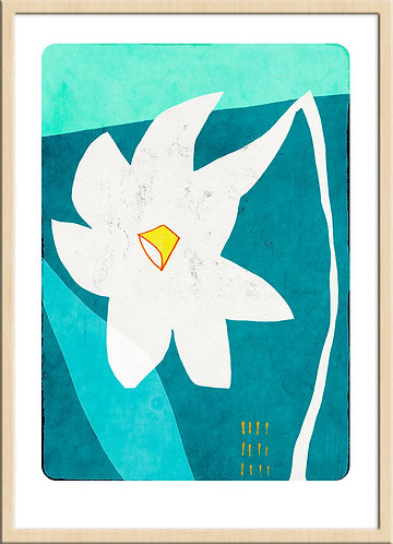 Narcissus (Limited Edition)