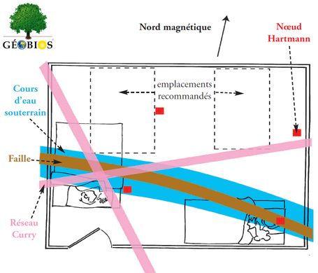 Geobios image.jpg