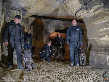 K9 Cave Trailing with Xtreme