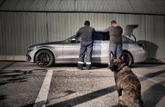 Werkhond XTREME Nuyvilaq Working Dogs