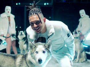 Nuyvilaq Working Dogs in videoclip Ronnie Flex