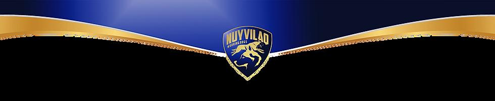 Banner logo nuyvilaq working dogs werken