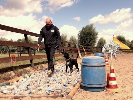 9 augustus 2020 geeft Nuyvilaq Working Dogs een Stress & Control training voor honden.