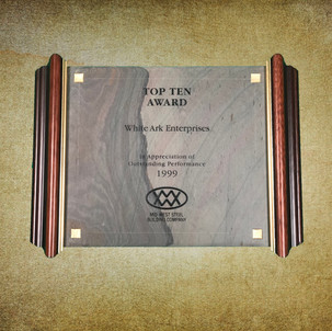 Top Ten Award 1999