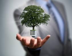 Sustentabilidade – um novo modelo de gestão do futuro