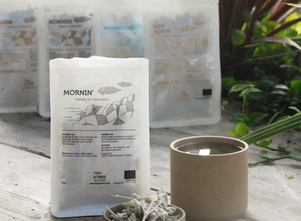 Article: Enjoying a cuppa with Teas & Trees