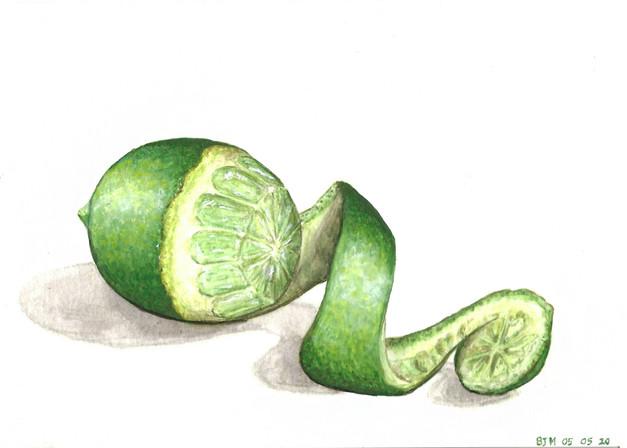 Lime, gouache